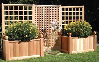 Beautiful Trellis Planter Boxes