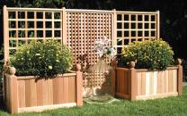 Trellis Planter Boxes